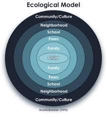 MST Eco Model